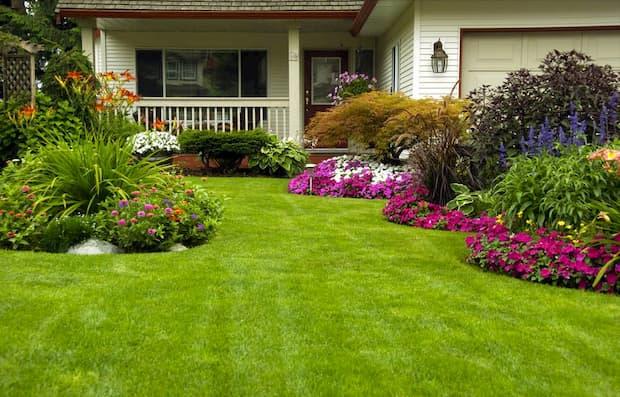 modèle de jardin décoratif