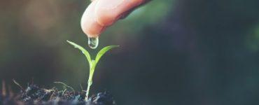 Como fazer reservatório de água da chuva