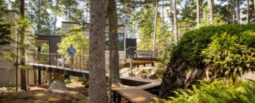 landscape-pathway-modern-cabin