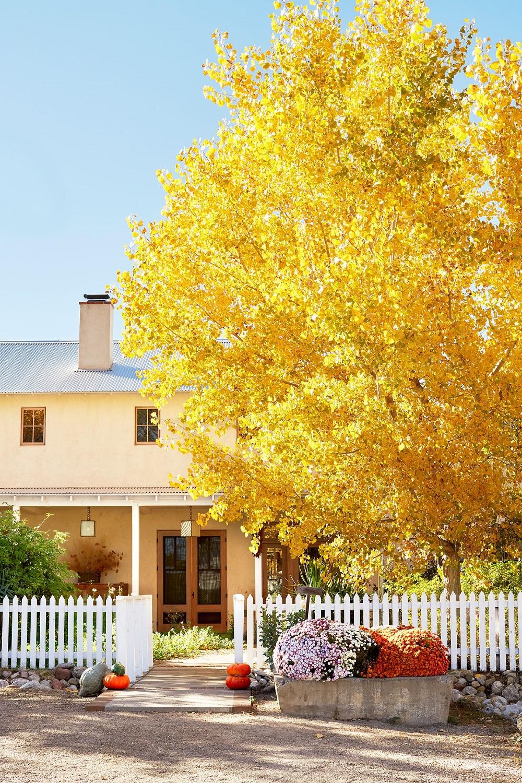 t3-60 Idées de décoration de Thanksgiving qui donneront une belle apparence à votre maison