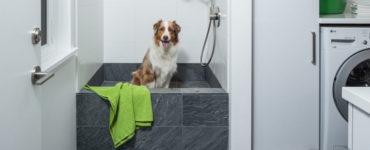 Эргономика ванной комнаты - полезные советы планирования уютного санузла