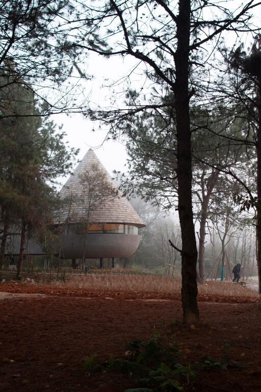 The Mushroom - Une maison en bois dans une pinède conçue par ZJJZ