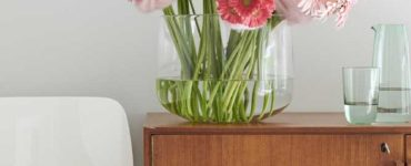 How to Use the Gerbera Flower in Decorative Spaces