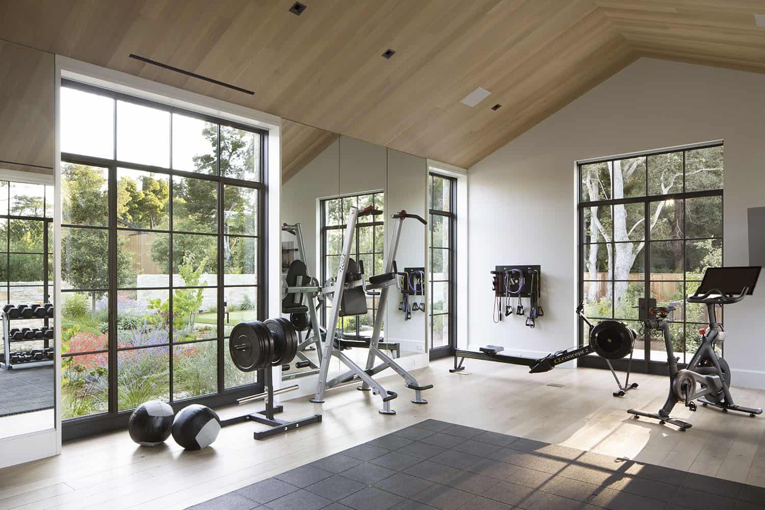 style transitionnel-home-gym
