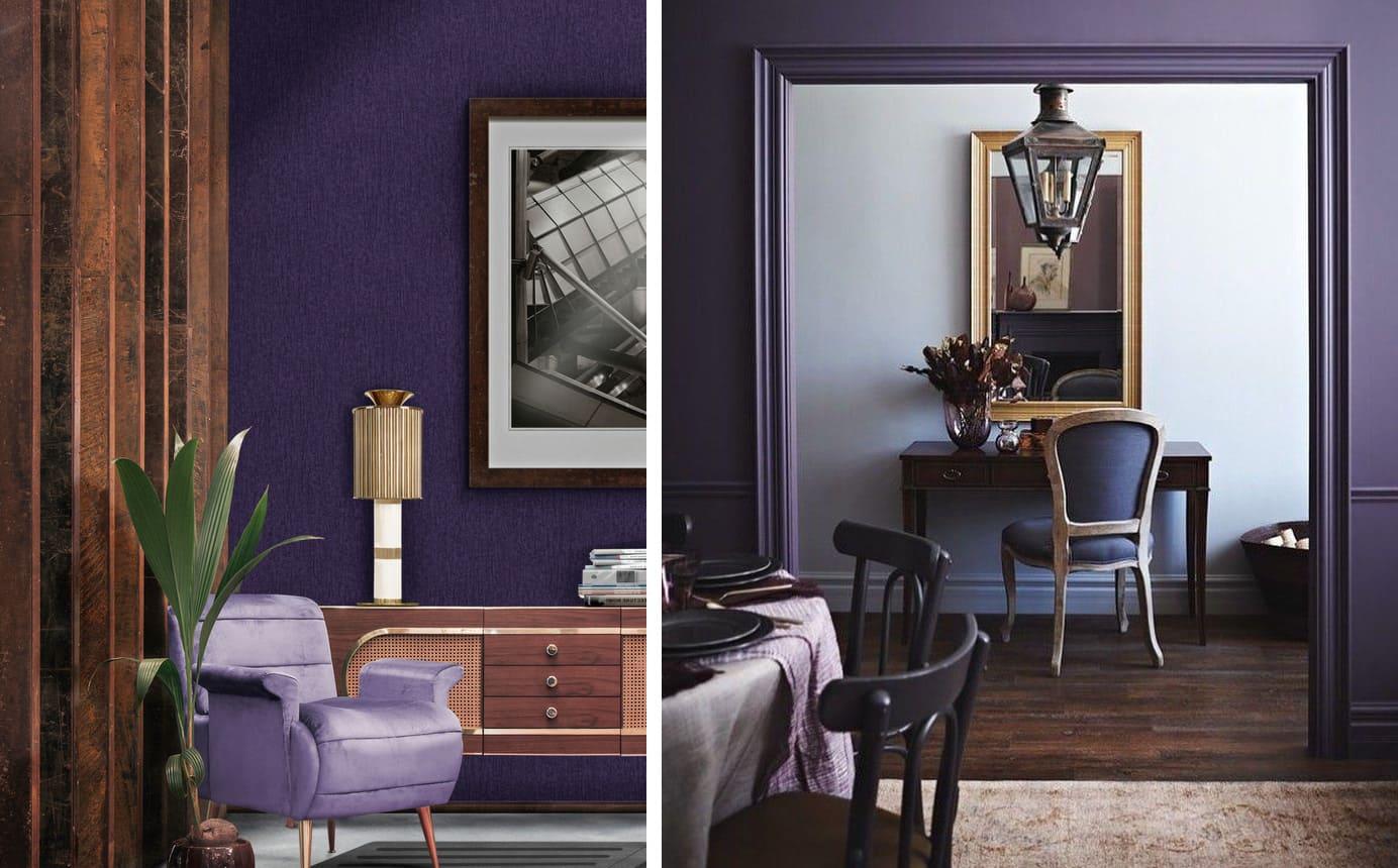 couleur violette à l'intérieur photo 15