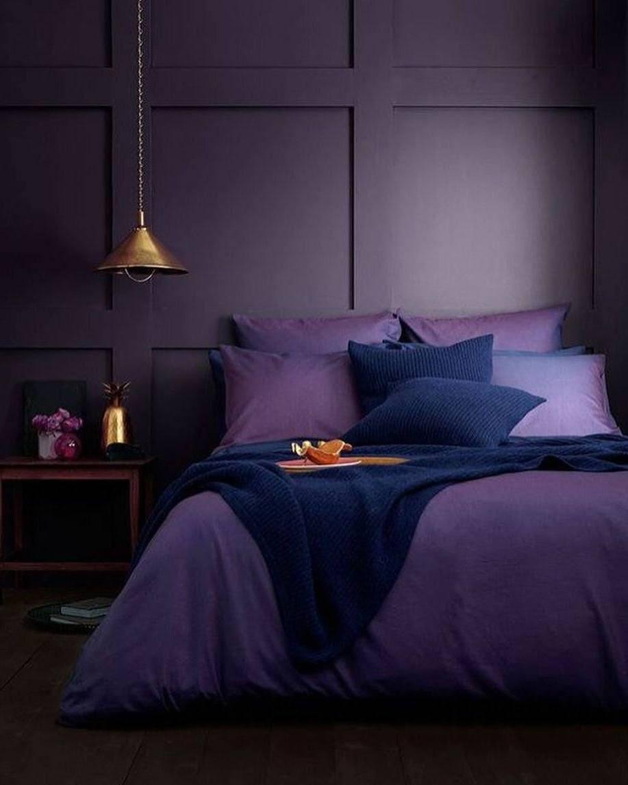 couleur violette à l'intérieur photo 16
