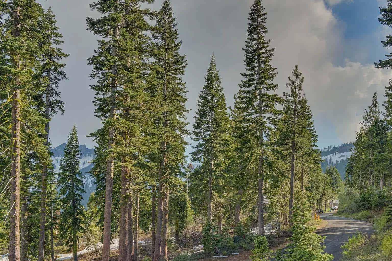 montagne-moderne-chalet-exterieur-paysage