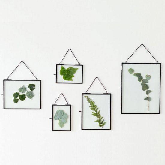 Affichez vos fleurs préférées dans un cadre d'herbier