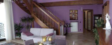 Salon violet solutions de design interessantes et combinaisons de couleurs